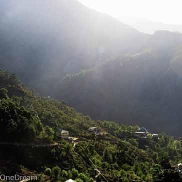 McLeod Ganj, terre d'exil du Dalaï-Lama en Inde