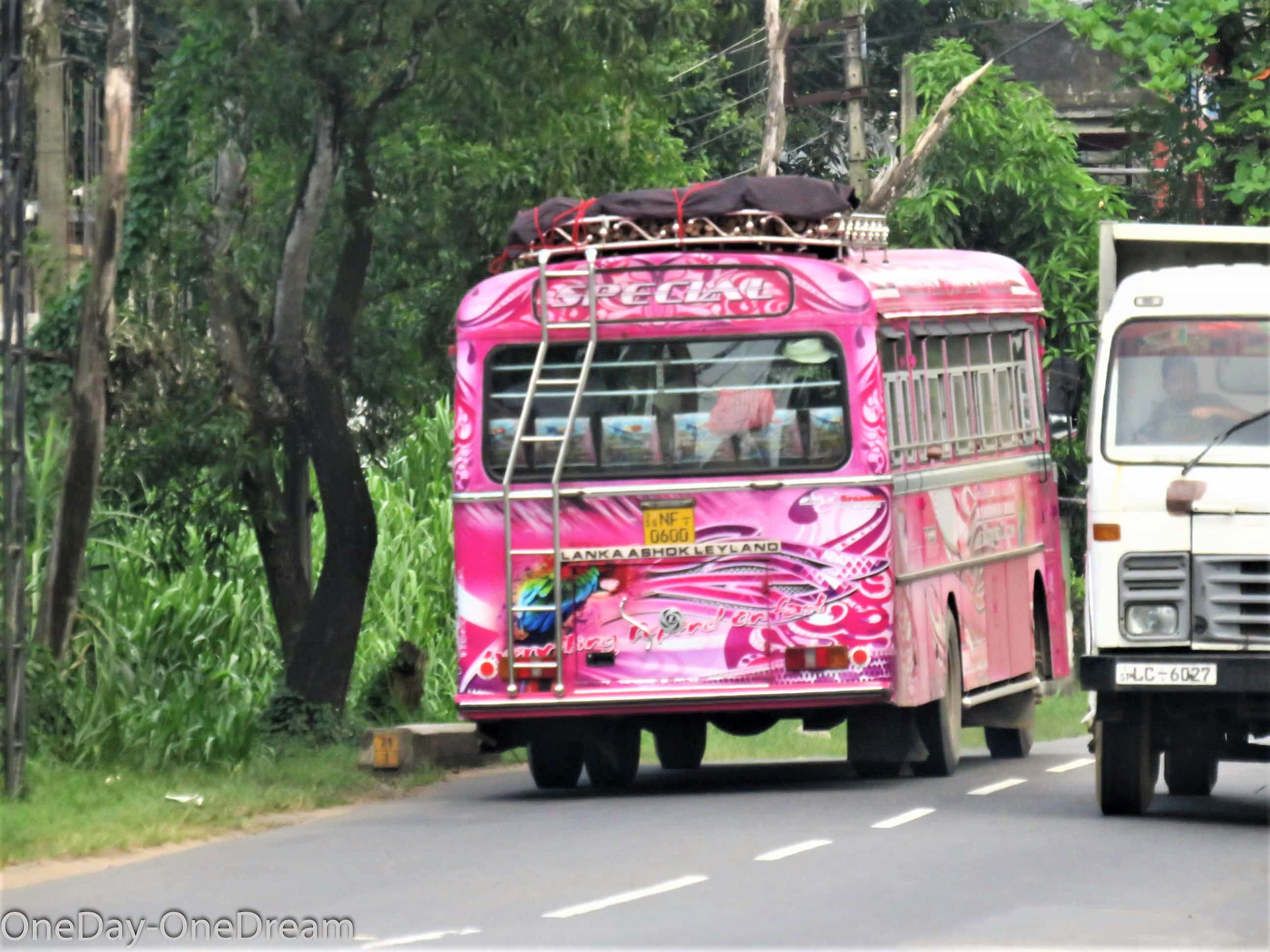 sri-lanka-bus-pink