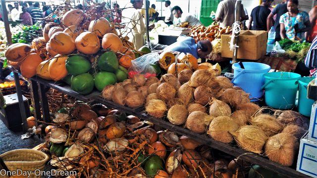 coconut-mauritius