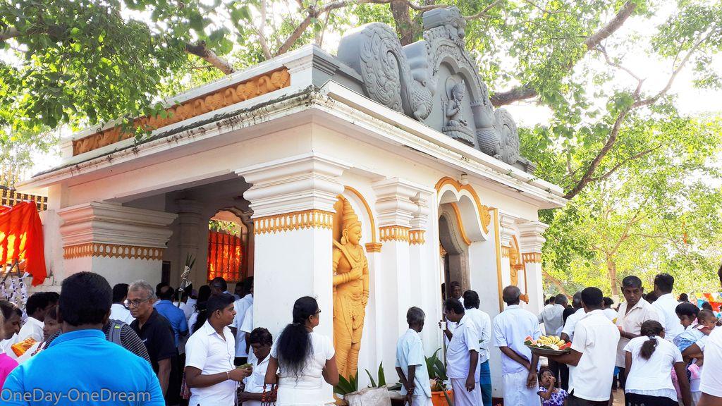 anuradhapura-bodhi