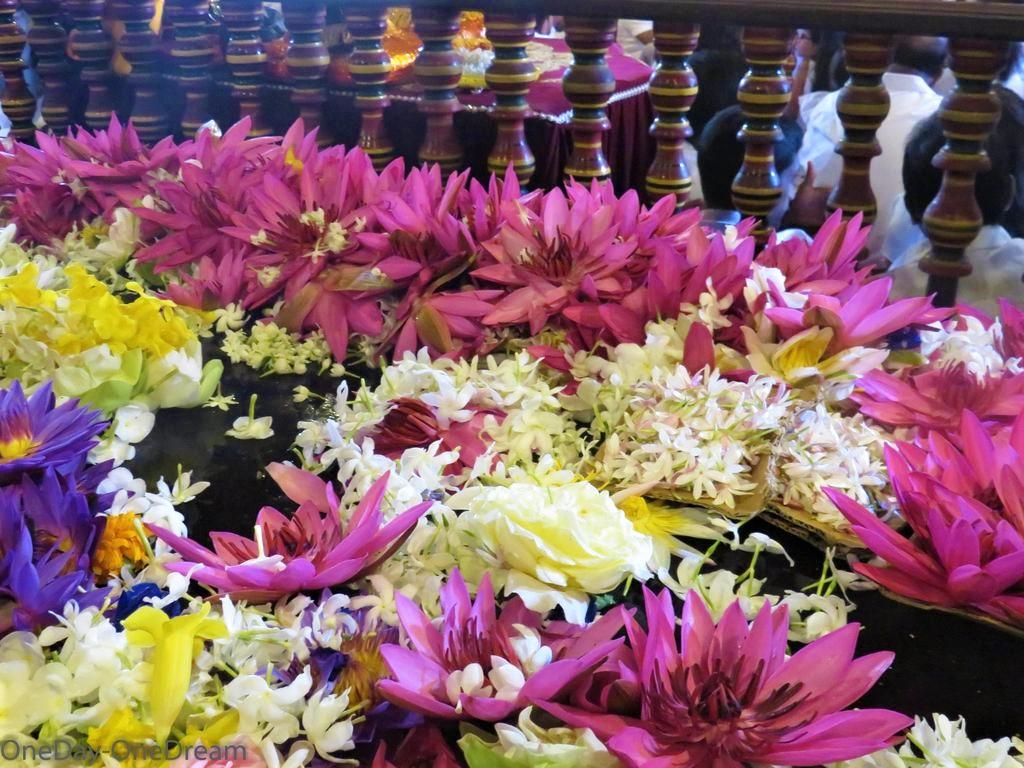offrande-fleur-sri-lanka