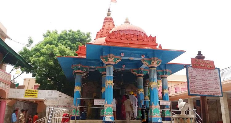 One Day Ajmer & Pushkar Local Sightseeing Trip by Car Brahma Temple