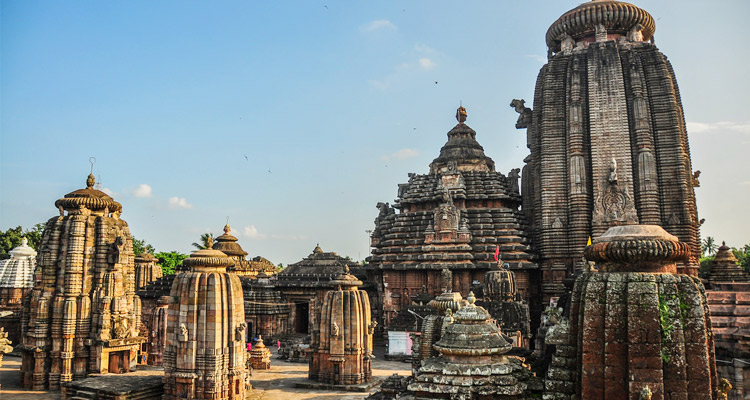 One Day Bhubaneswar Local Sightseeing Trip by Car Lingaraj Temple