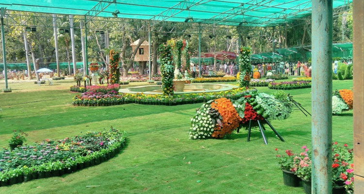 One Day Chennai to Pondicherry Trip by Car Botanical Garden