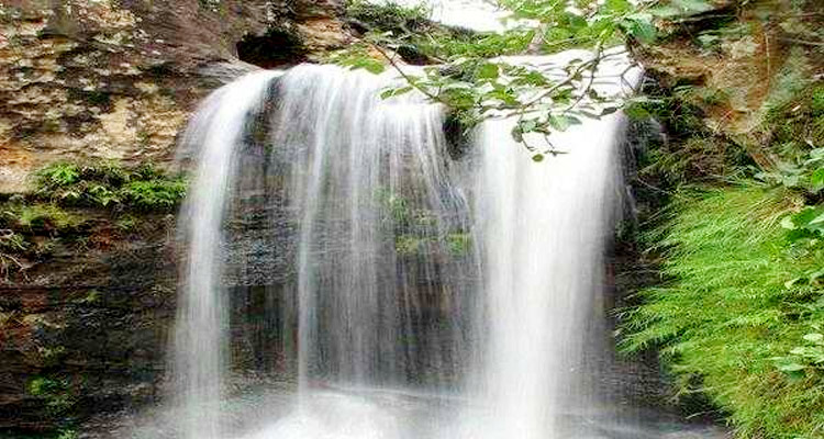 One Day Dalhousie Local Sightseeing Trip by Car Satdhara Falls