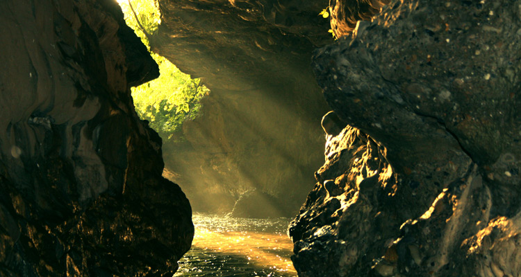 One Day Dehradun Local Sightseeing Trip by Car Robber's Cave