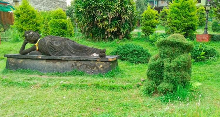 One Day Gangtok Local Sightseeing Trip by Car Saramsa Garden