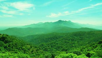 One Day Mysore to Coorg Trip by Car Header