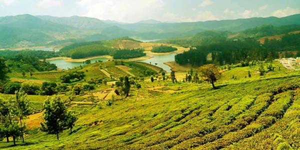 One Day Mysore to Ooty Trip by Car Header