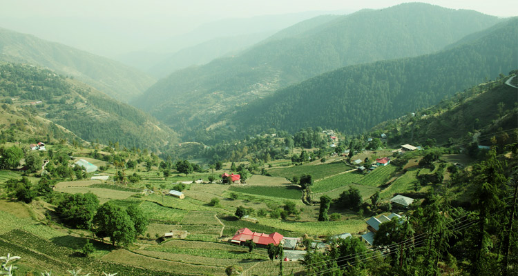 Package glimpse One Day Shimla & Kufri Local Sightseeing Trip by Car