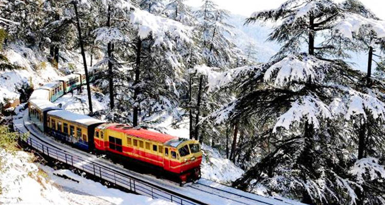 Package Glimpse One Day Shimla Local Sightseeing Trip by Car