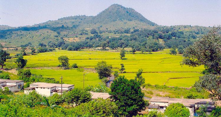 One Day Vizag to Araku Valley Trip by Car Ananthagiri Coffee Plantations