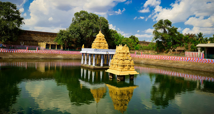 1 Day Chennai to Kanchipuram Tour by Cab Varadharaja Perumal Temple