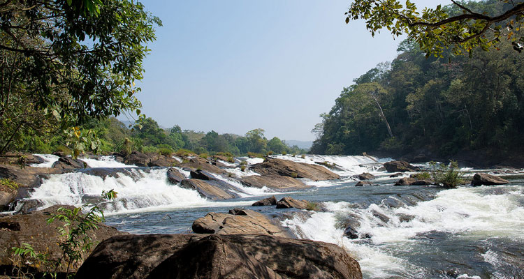 1 Day Coimbatore to Malampuzha and Athirappilly Waterfalls Tour by Cab Vazhachal Waterfalls