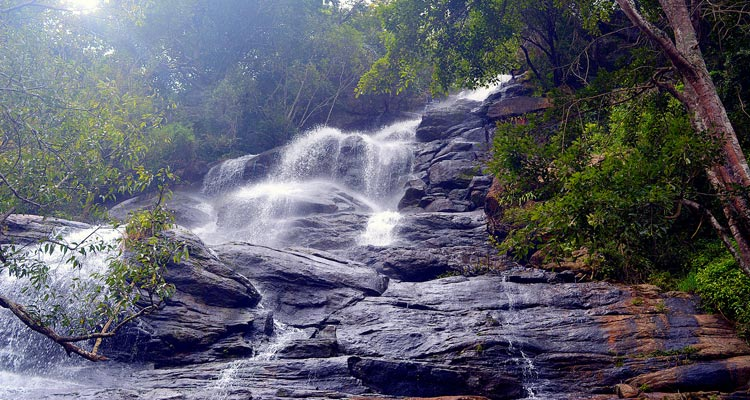 1 Day Coimbatore to Yercuad Tour by Cab Killiyur Falls