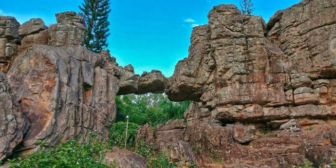 1 Day Tirupati Local Sightseeing Trip by Car