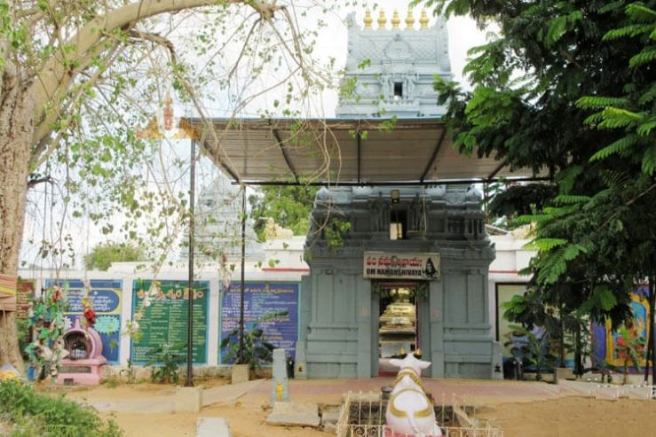 1 Day Tirupati Local Temple Trip with Sri Agastheswara Swamy Temple (Thondavada)
