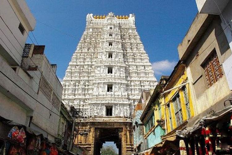 1 Day Tirupati Local Temple Trip with Sri Govindaraja Swamy Temple