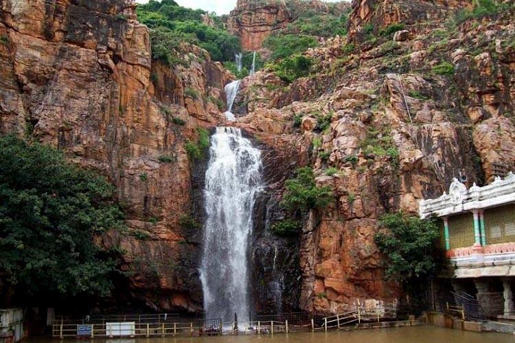 1 Day Tirupati Local Temple Trip with Sri Kapileswara Swamy Temple