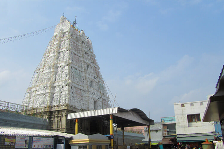 1 Day Tirupati Local Temple Trip with Sri Padmavathi Ammavari Temple (Tiruchanoor)
