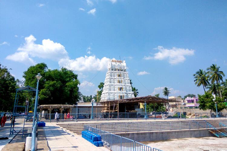 1 Day Tirupati Local Temple Trip with Sri Kalyana Venkateswara Swamy Temple (Srinivasa Mangapuram)