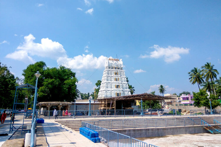 1 Day Tirupati Local Temple Trip with Sri Kalyana Venkateswara Swamy Temple (Srinivasa Mangapuram)