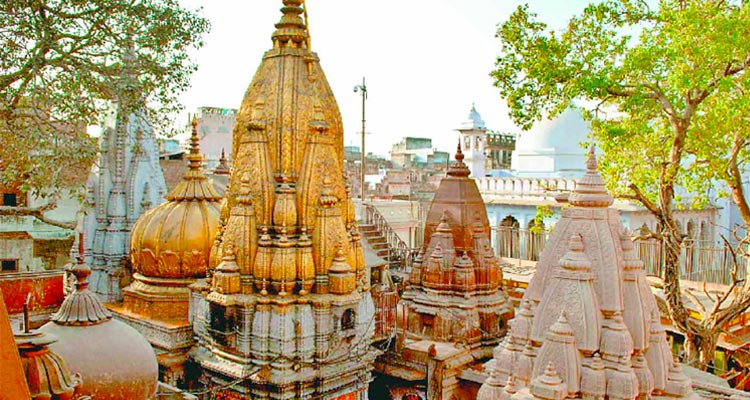 1 Day Varanasi Local Sightseeing Tour by Cab Kashi Vishwanath Temple