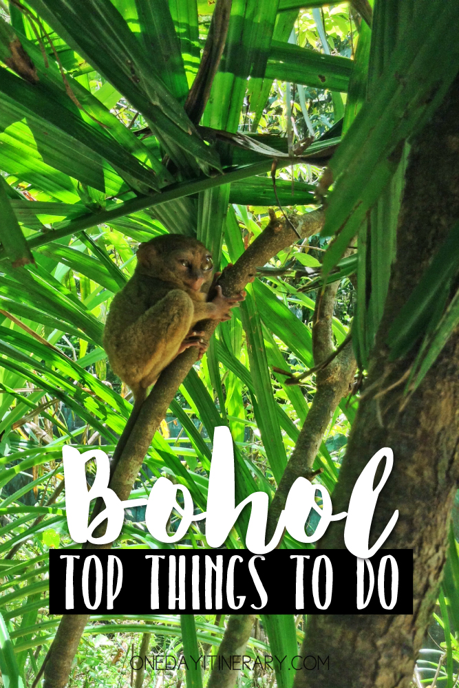 Bohol Philippines Top things to do