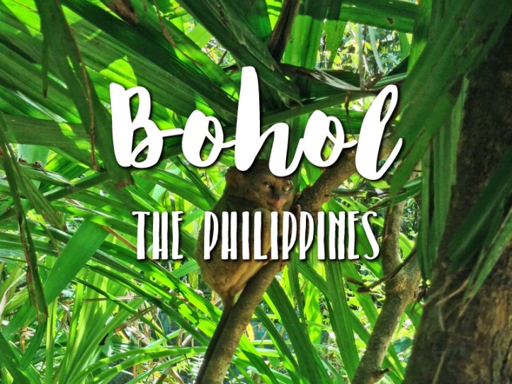 one-day-in-bohol-philippines-itinerary