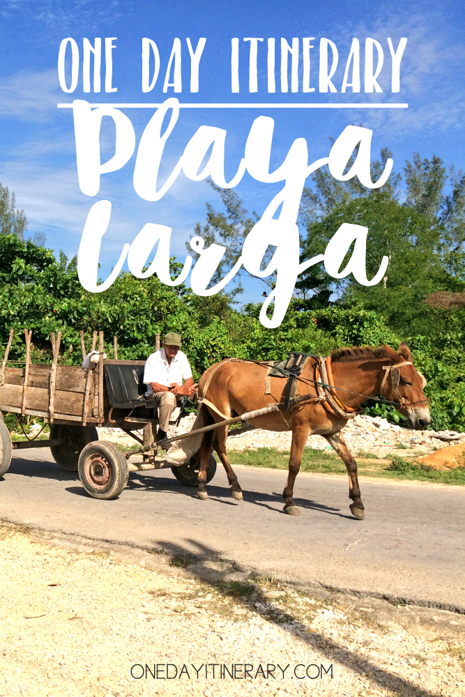 Playa Larga Cuba One day itinerary
