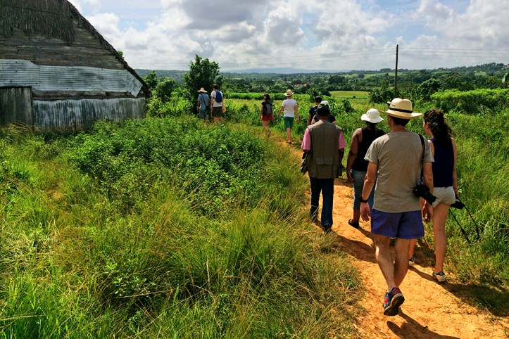 Guided Tour, Vinales