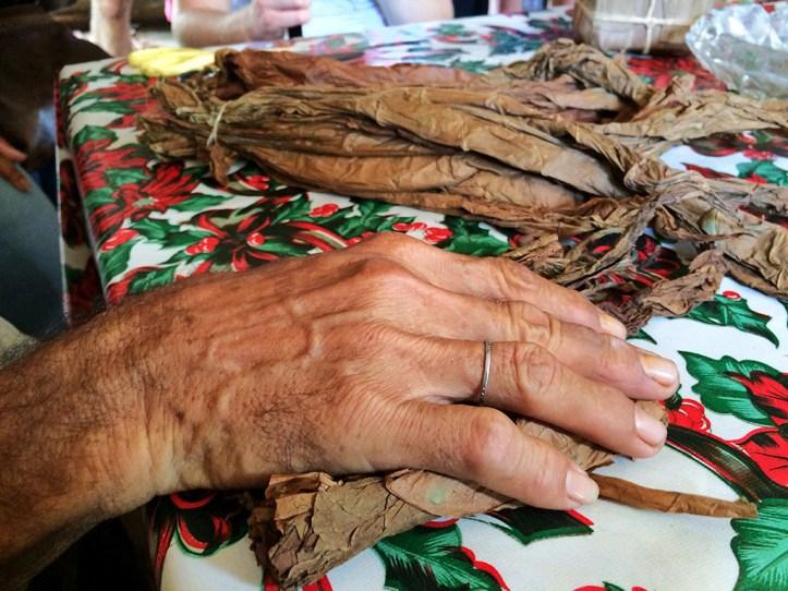 Tobacco Farm Tour Vinales