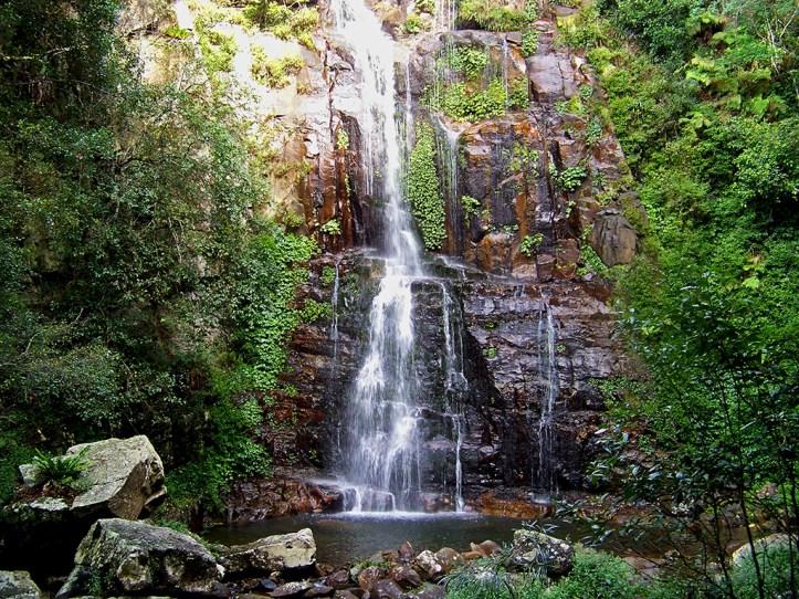 Minnamurra Falls Shellharbour