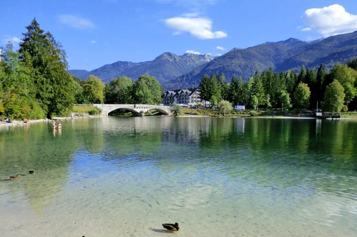 Lake Bohinj in Summer