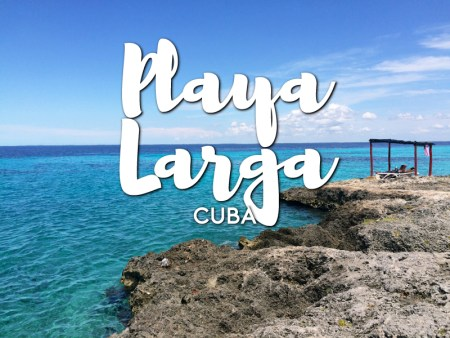 One day in Playa Larga Itinerary