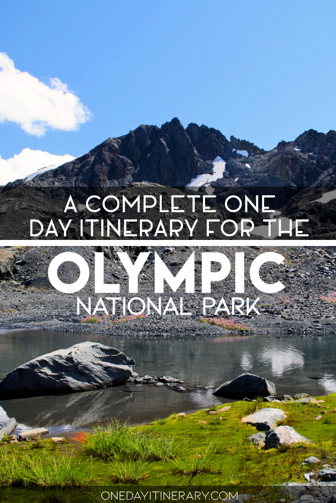 A complete one day itinerary for the Olympic National Park