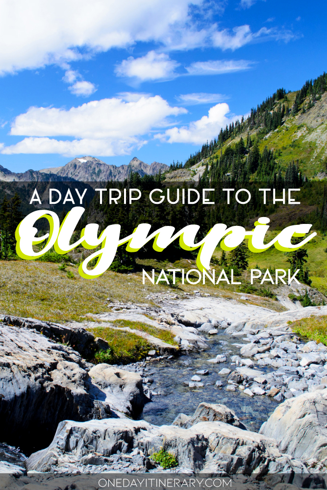 A day trip guide to the Olympic National Park