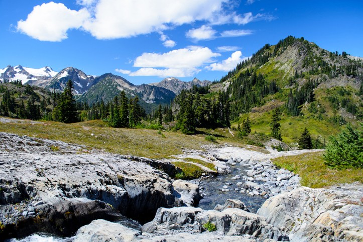 Olympic National Park in Spring