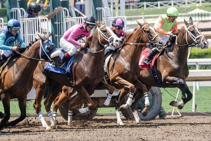 Saratoga Horse Race Track