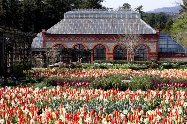 Biltmore conservatory, Asheville