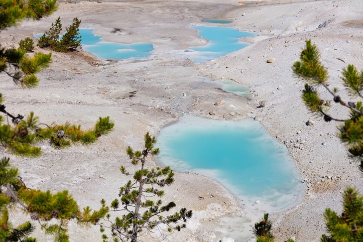 Colorful pools of Norris Geyser Basin, Yellowstone National Park