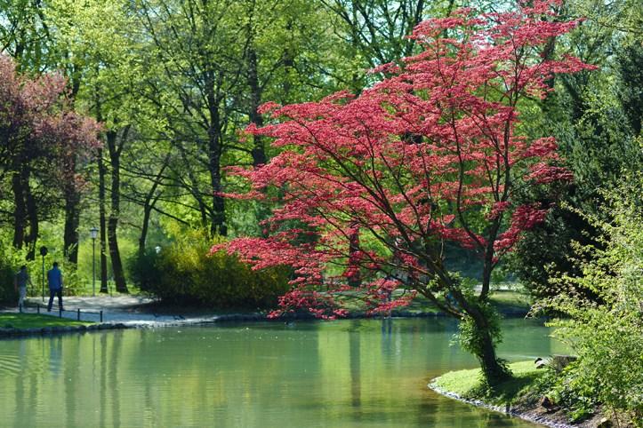 The Englisch Garten, Munich