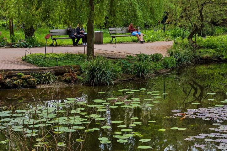 Botanical Garden, Cologne