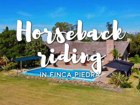 Horseback riding in Finca Piedra