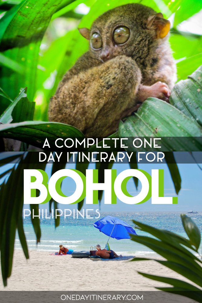 A complete one day itinerary for Bohol, Philippines