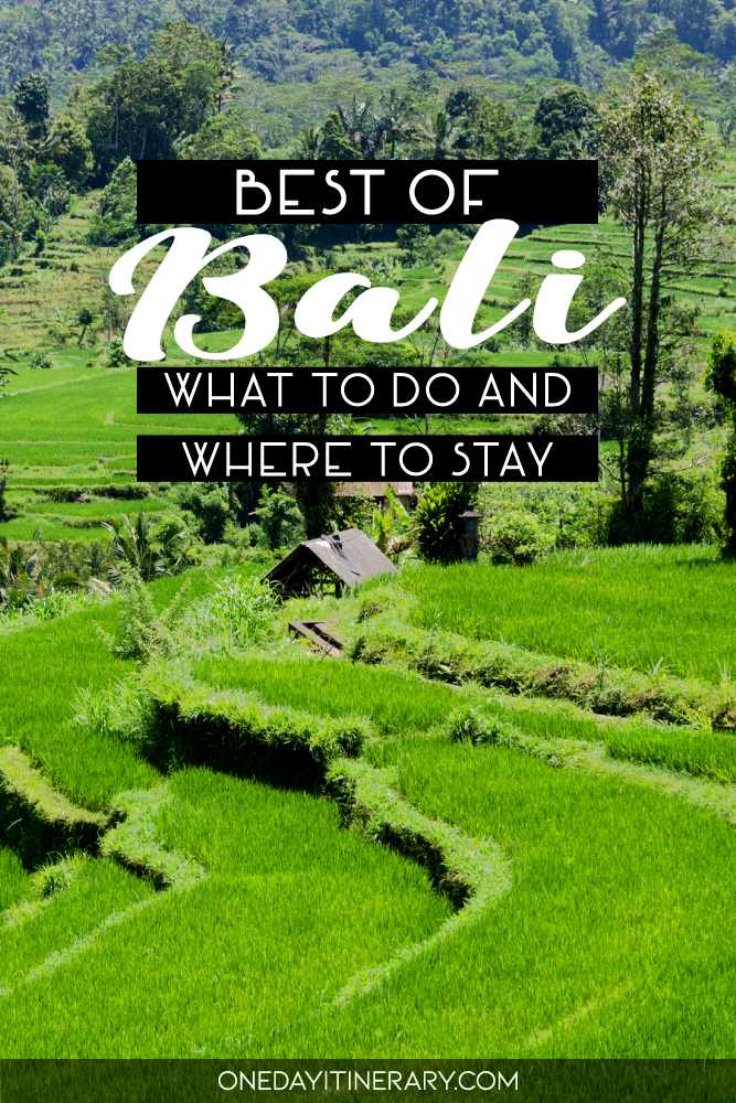 Best of Bali - What to do and where to stay