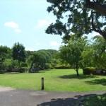 等々力渓谷日本庭園