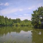 三宝寺池厳島神社