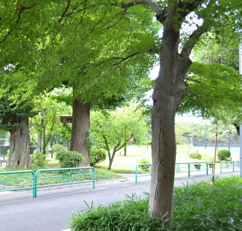 柏の宮公園入口