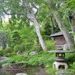 柏の宮公園日本庭園